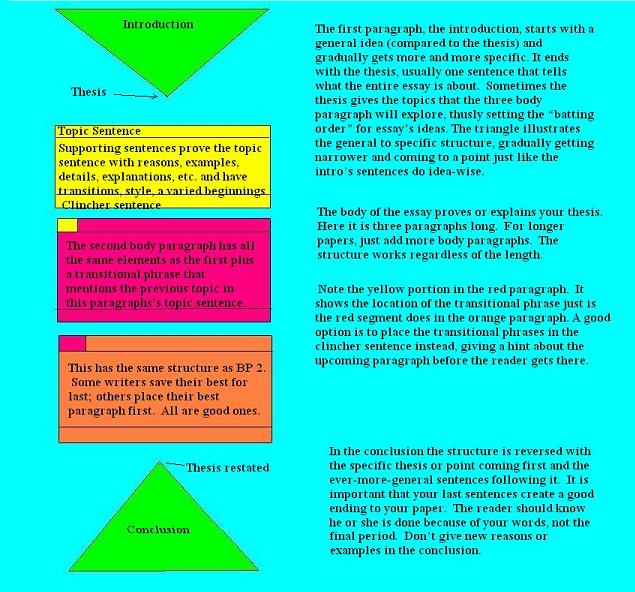 essaystructure colorcoded - Essay Structure Format