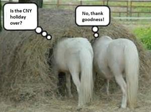 horse bums